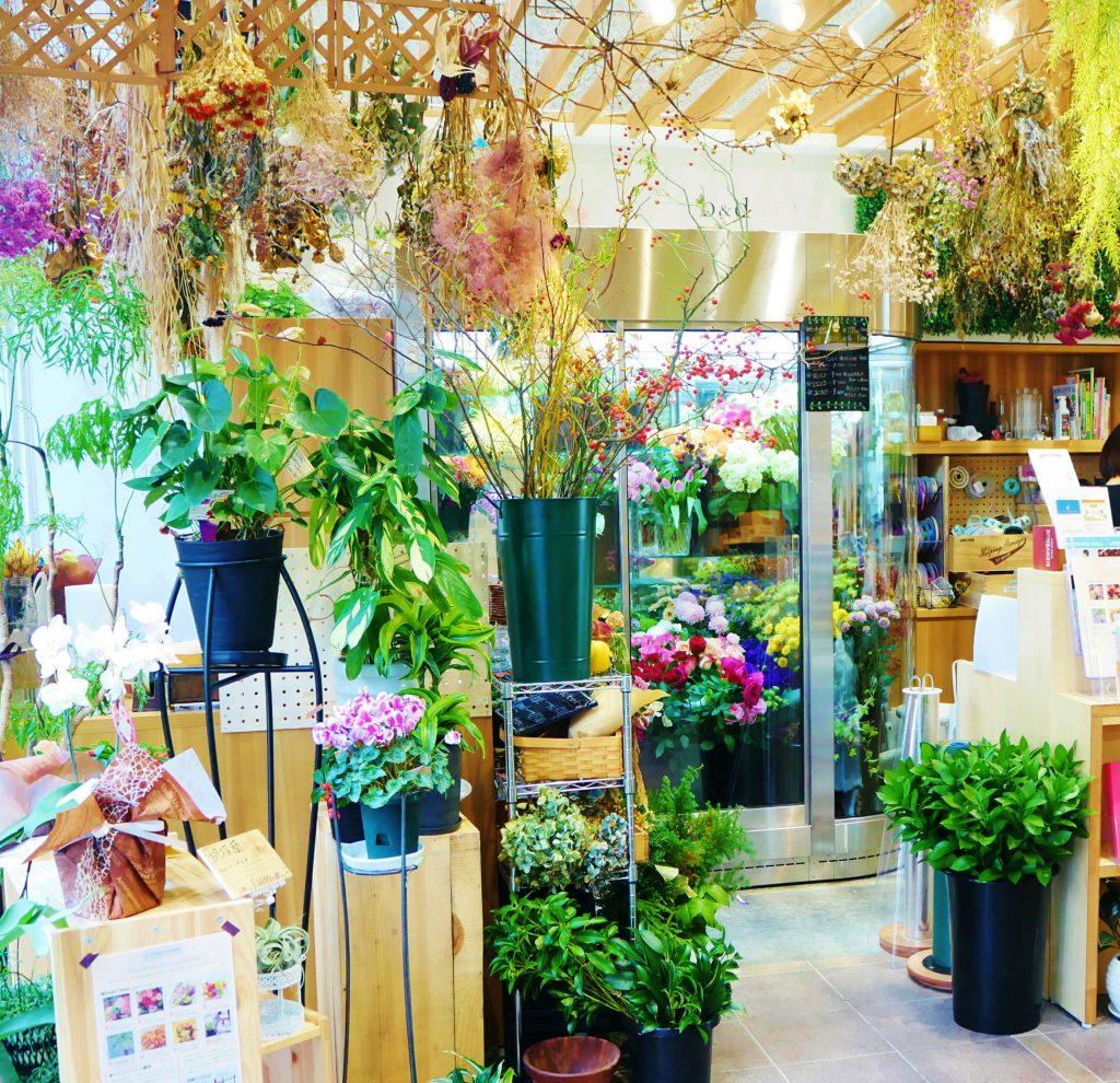 花屋,フラワーショップ,徳山商店街,市庭フラワー,観葉植物,榊