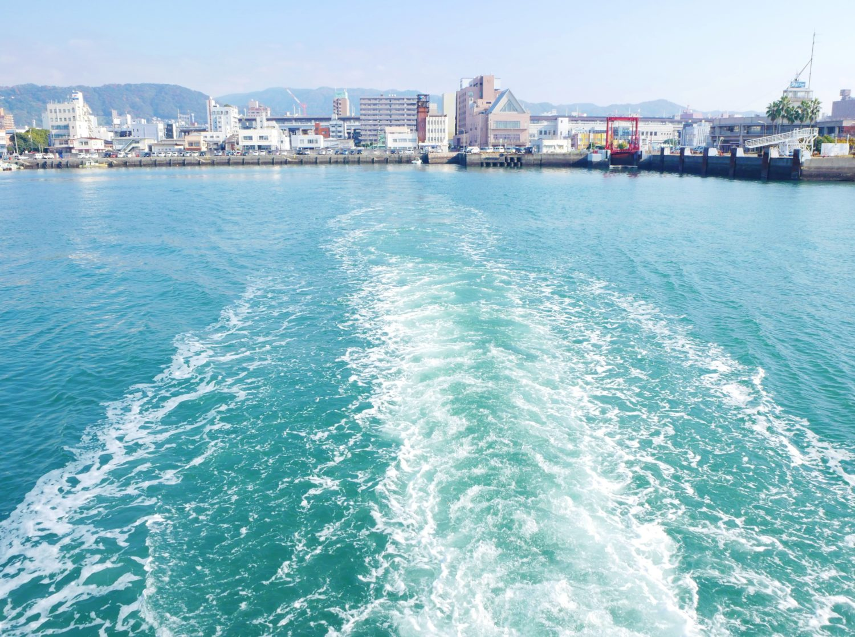 大津島ねこ