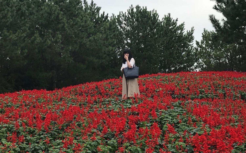 赤い花の中