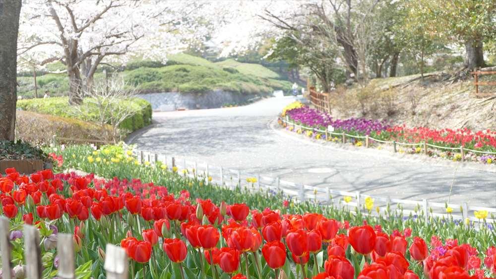永源山公園