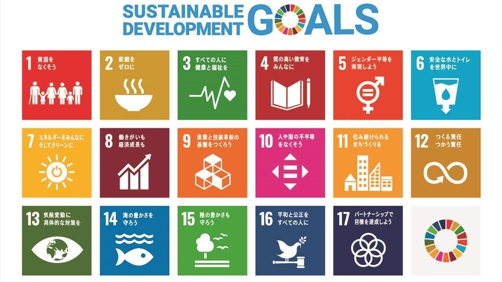 SDGs17